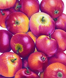 Ann_Swan Apples 'Crocketts' Red